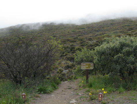 Trails in the Haleakala National Park