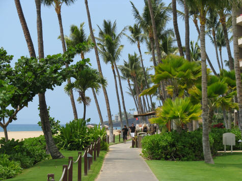 Kaanapali Beach Walk At Kaanapali Resort Maui Hawaii