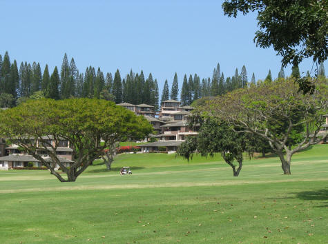 Golf Courses on the Island of Maui in Hawaii