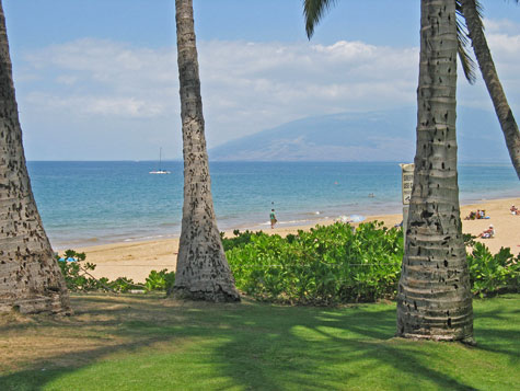 Vacation Packages to Maui